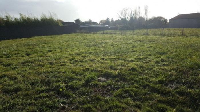 Millet Immobilier vente terrain et maison Grues